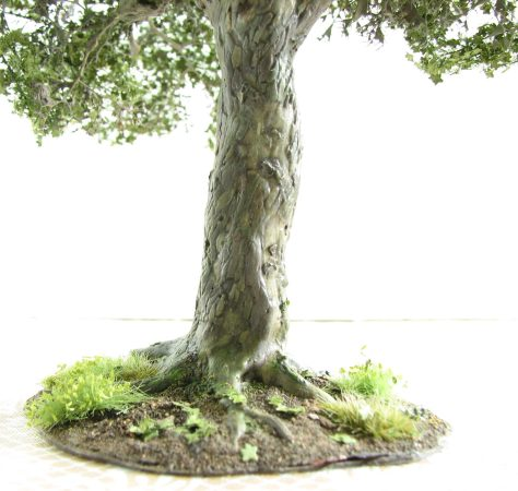 plane tree, 28mm, bark texture