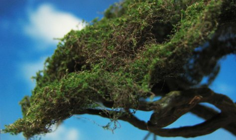 yew tree, 28mm, mushrooms, scenic base, forest, rat, owl, bird's nest, hollow trunk