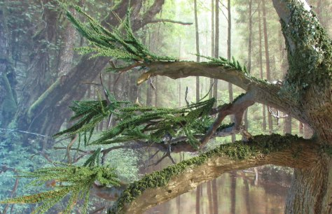Foliage 2 feathers