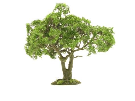 wargamign terrain, oak tree, scenic base, tutorial, realistic bark