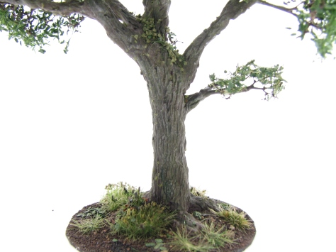 wargamign terrain, oak tree, scenic base, tutorial, realistic bark