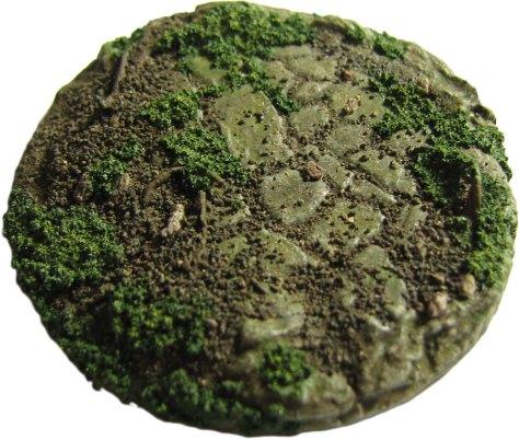 flagstone-moss