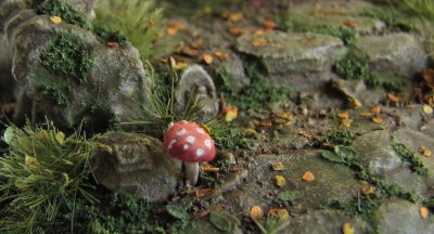 fly-agaric-close-up.jpg?w=400