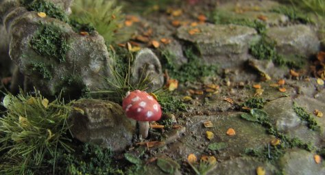 fly-agaric-close-up