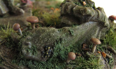 mushrooms-an-salamander-close-up